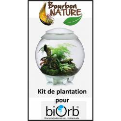 Kit plantation tropicale biOrb Air 60