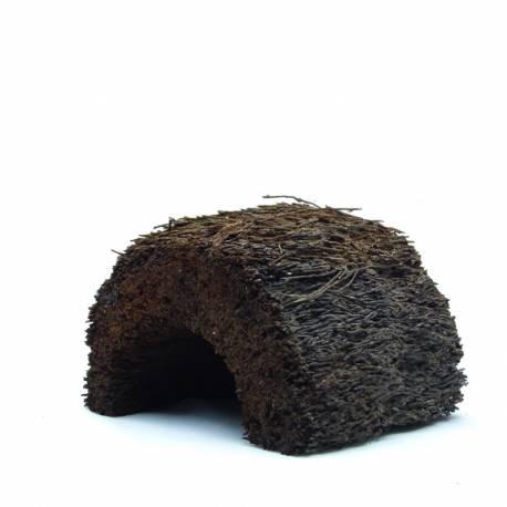 Demi pot de Xaxim - Mesure entre 10 et 15cm de long
