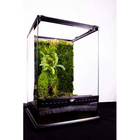 Kit Epiweb pour Terrarium 30x30x45cm