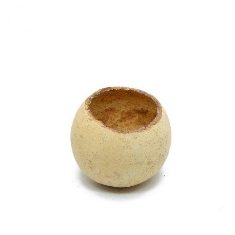 Bell cup - Cachette, élément de décor, support Tillandsia etc...