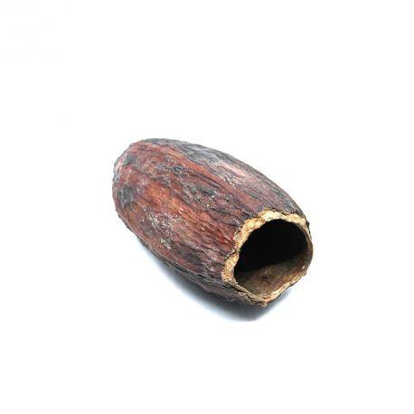 Cabosse sèche de cacao - Cachette idéale