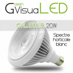 SpectraBULB 20w GreenVisuaLED Douille e27