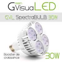 SpectraBULB 30w GreenVisuaLED Douille e27
