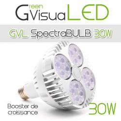 SpectraBULB 30w GreenVisuaLED Douille e27