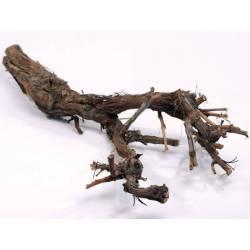 Cep de vigne naturel 30 - 40cm de long - Non sablé